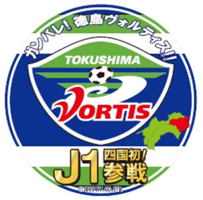 Vortis1